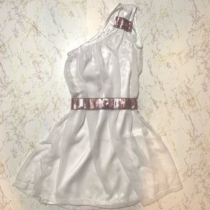 Custom Made Girls Theater Halloween Dress Costume